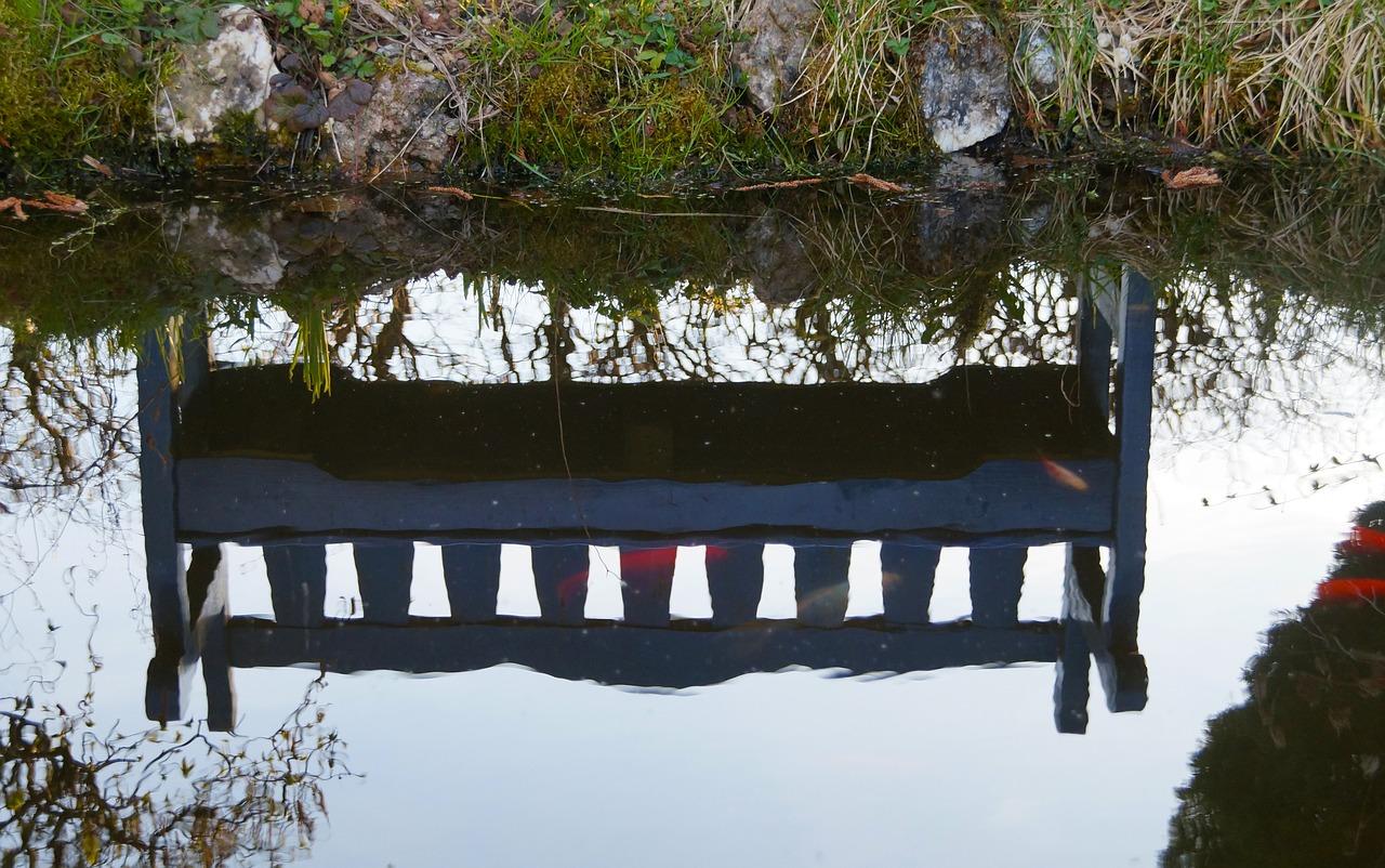 Paysagiste pour bassin aquatique dans les Ardennes
